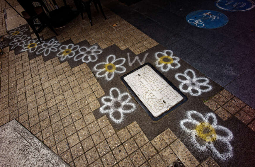 Flowers in the pavement