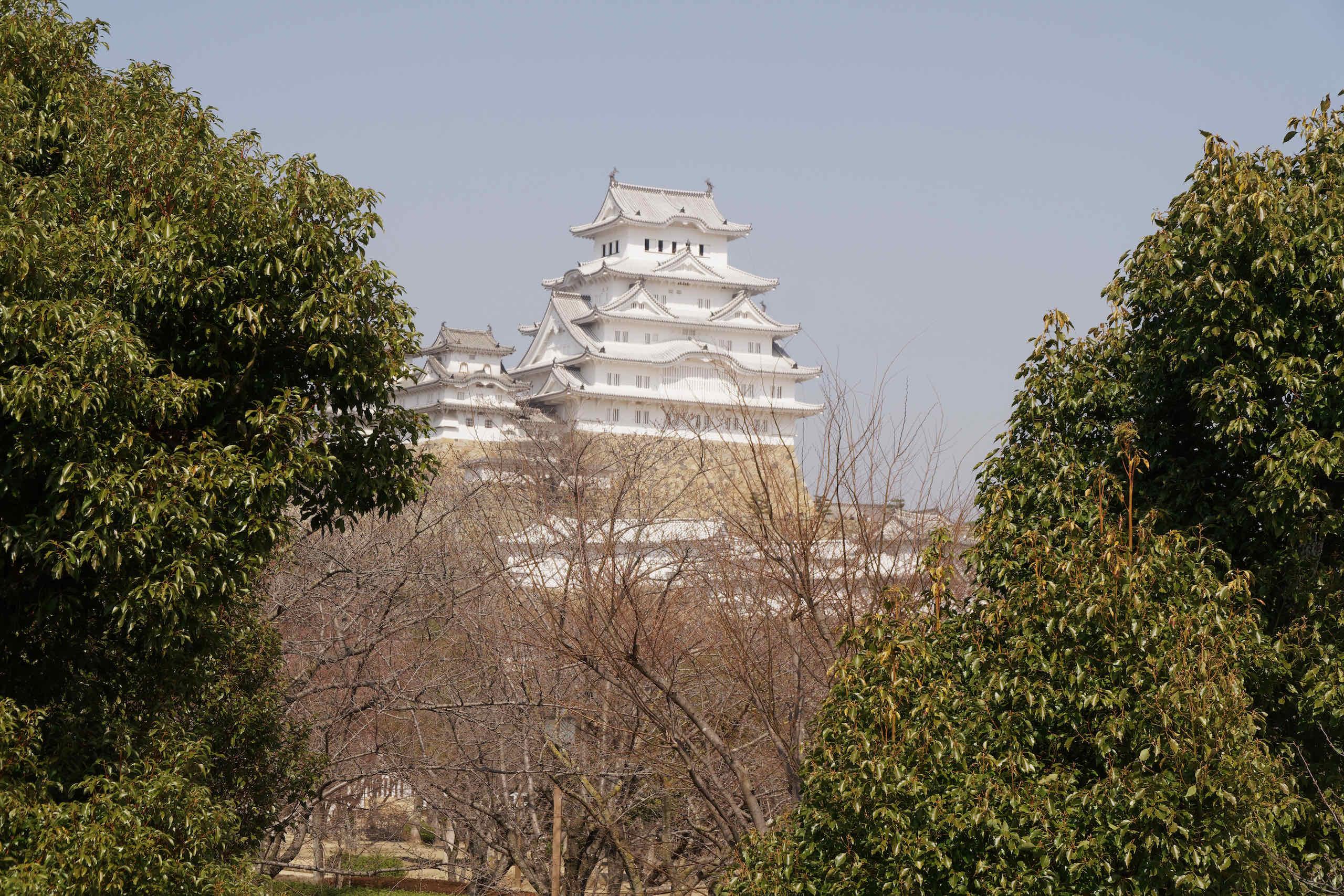 himeji castle (1)